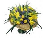 Желтые тульпаны